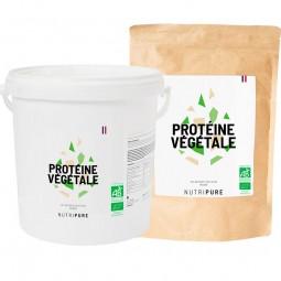 proteine riz
