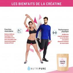creatine action
